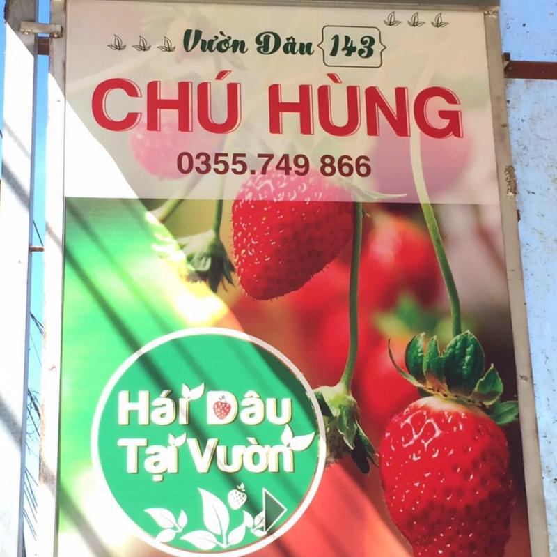 Vườn Dâu Chú Hùng