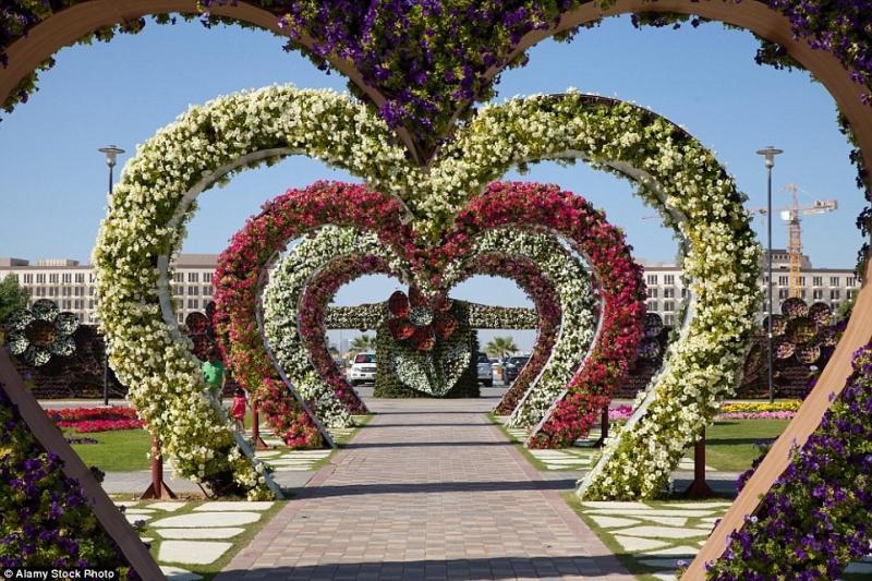 Vườn Dubai Miracle
