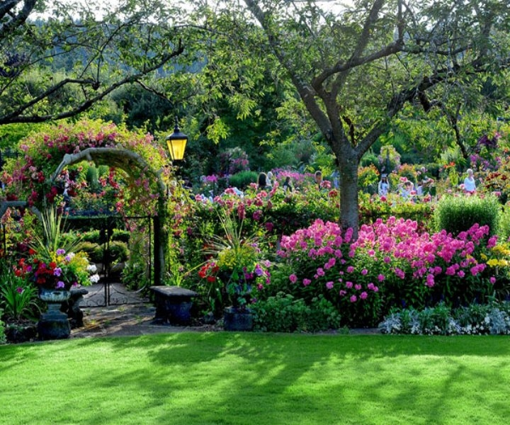 Vườn hoa Butchart, Canada