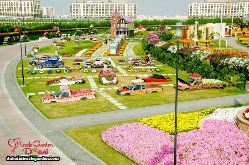 Vườn hoa diệu kỳ