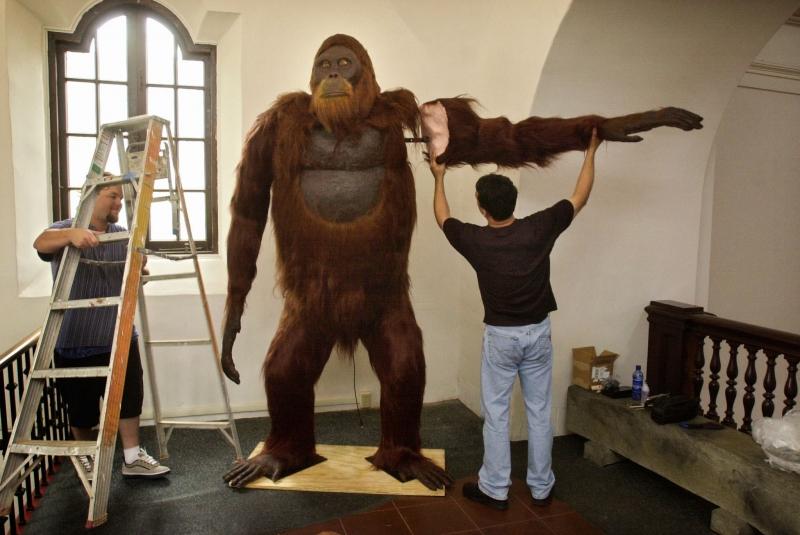 Chiều cao khoảng 3 m và trọng lượng lên đến 340 kg.