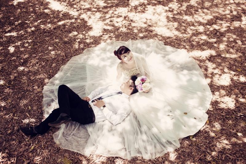 Bộ hình cưới dưới bóng râm của vườn nhãn thật lãng mạn