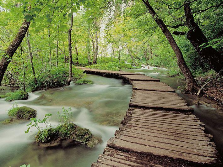 Lối vào vườn quốc gia Ba Vì