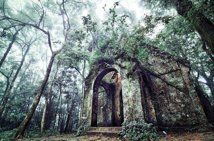 Nếu là người yêu thiên nhiên nhưng lại không có nhiều thời gian rảnh cho các chuyến du lịch dài ngày thì vườn Quốc gia Ba Vì chính là một gợi ý lý tưởng dành cho hai bạn.
