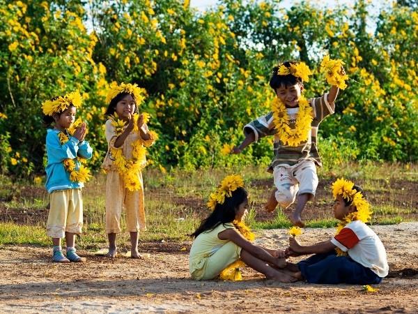 Ba Vì mùa hoa dã quỳ nở