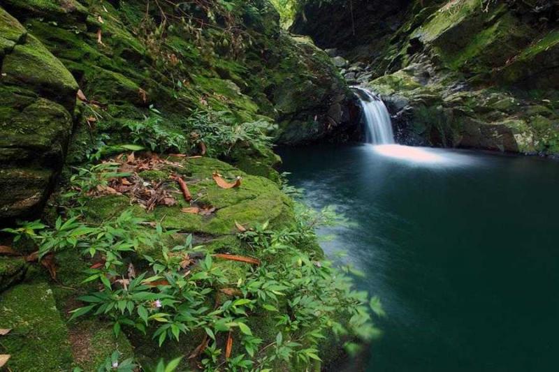 . Với những ai yêu thích sự đơn giản, hoang sơ, yên tĩnh thì vườn quốc gia Bạch Mã là điểm tới lý tưởng nhất.