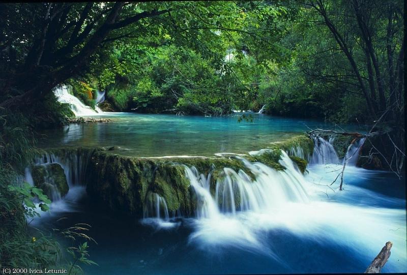 Vườn quốc gia Bạch Mã (Huế)