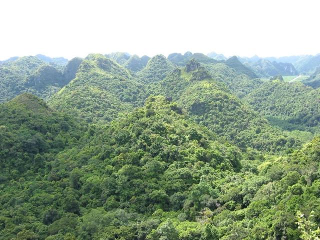Khung cảnh thiên nhiên hùng vĩ, núi non trùng trùng điệp điệp, vườn quốc gia Cát Bà được UNESCO công nhận là khu dự trữ sinh quyển của thế giới.