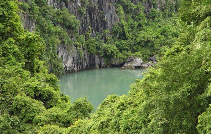 Vườn quốc gia Cát Bà là khu rừng đặc dụng của Việt Nam, khu dự trữ sinh quyển thiên nhiên thế giới.