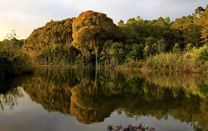 Vườn quốc gia Chư Mom Ray