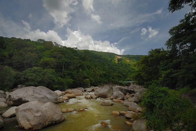 Dòng suối trong vườn quốc gia Chư Yang Sin
