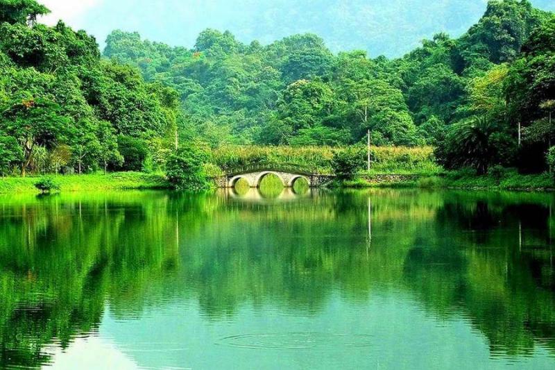 Vẻ đẹp thiên nhiên hữu tình nơi Vườn Quốc Gia Cúc Phương