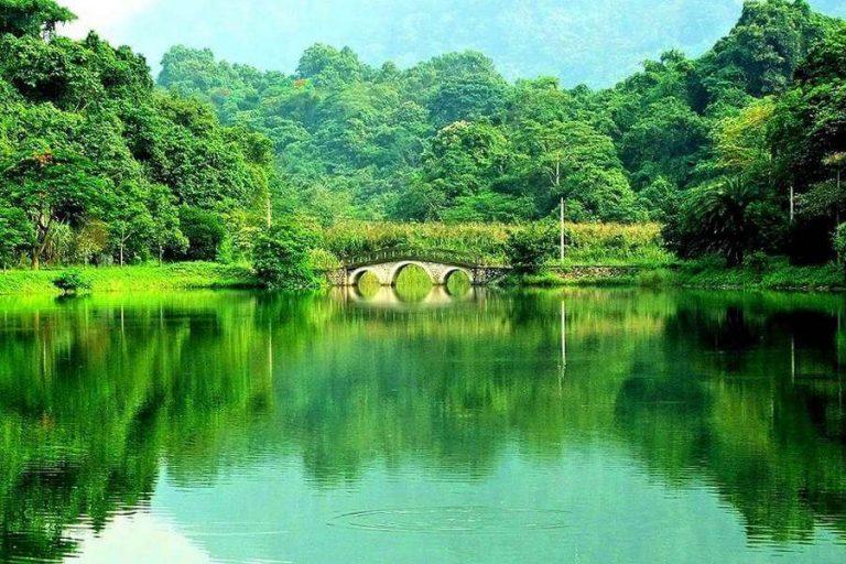 Vườn quốc gia Cúc Phương có diện tích là 25.000ha và cũng là rừng quốc gia đầu tiên của Việt Nam.