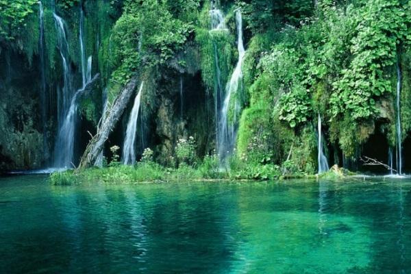 Vườn quốc gia Cúc Phương - khu bảo tồn thiên nhiên đầu tiên của Việt Nam