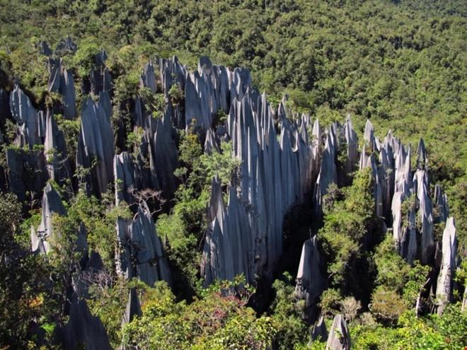 Vườn quốc gia Gunung Mulu với hệ thống hang động đá vôi lớn nhất thế giới