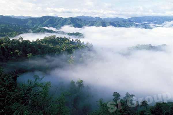 Vườn quốc gia Kaeng Krachan