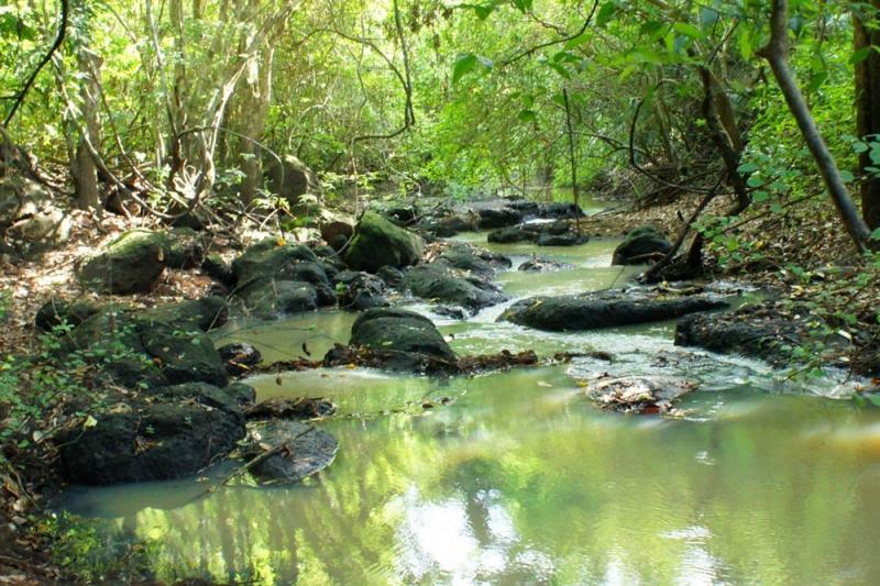 Vườn quốc gia Lò Gò - Xa Mát