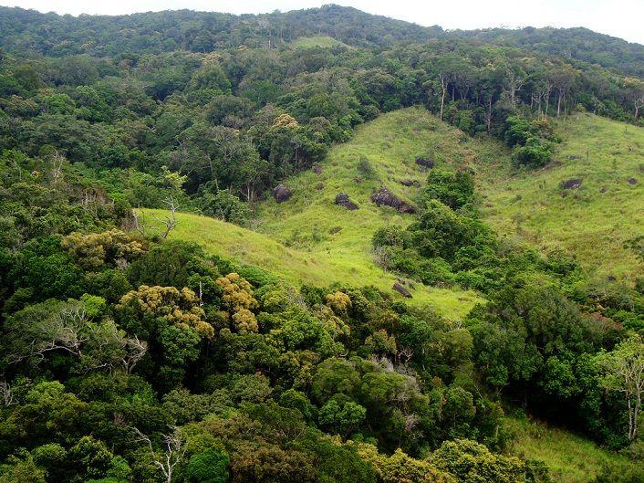 Vườn quốc gia Núi Chúa Ninh Thuận được cho là môi trường sinh thái rất lý tưởng và giá trị về nhiều mặt đối với cuộc sống con người.