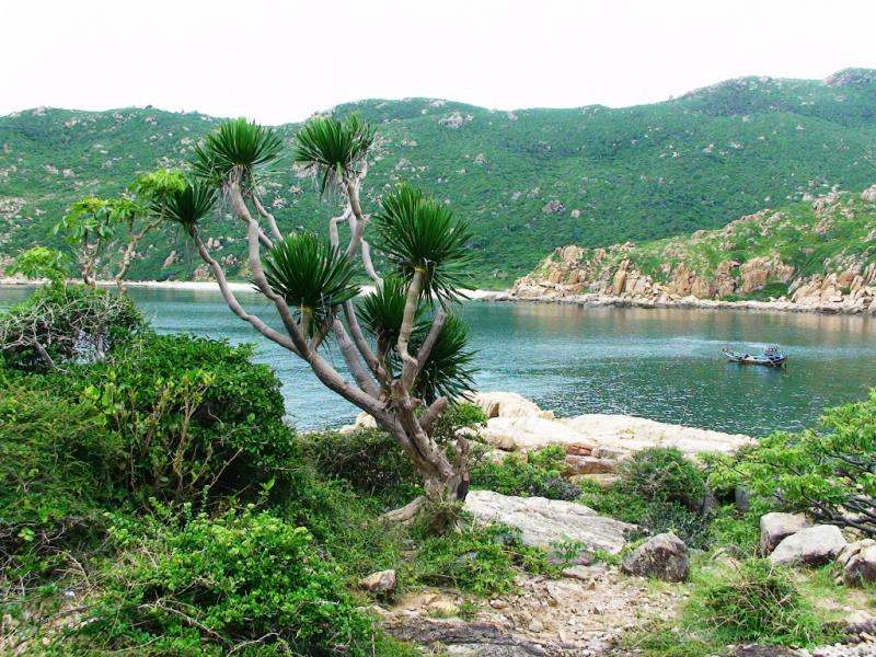 Vườn quốc gia Núi Chúa (Ninh Thuận)