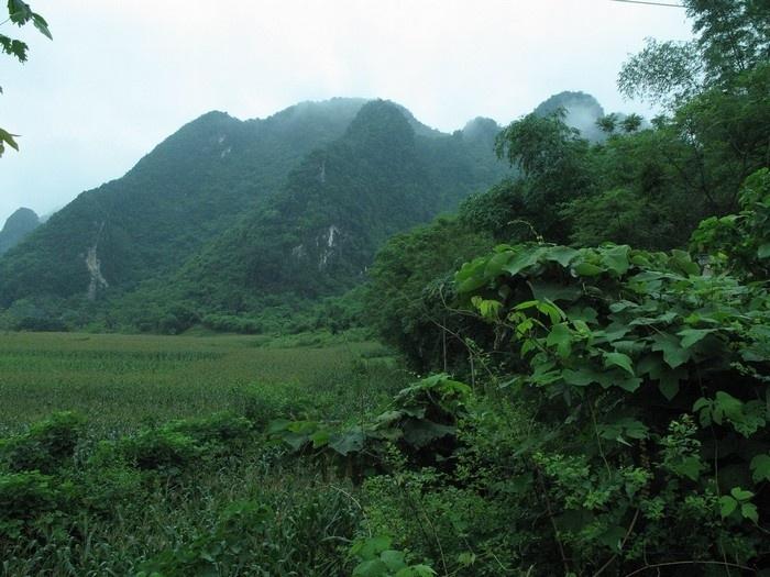 Vườn quốc gia Pù Mát (Nghệ An)