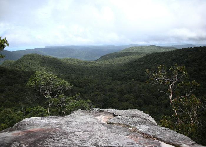 Vườn quốc gia còn hội tụ nhiều nét đẹp của thiên nhiên với rừng, biển, suối, thác và núi đồi.