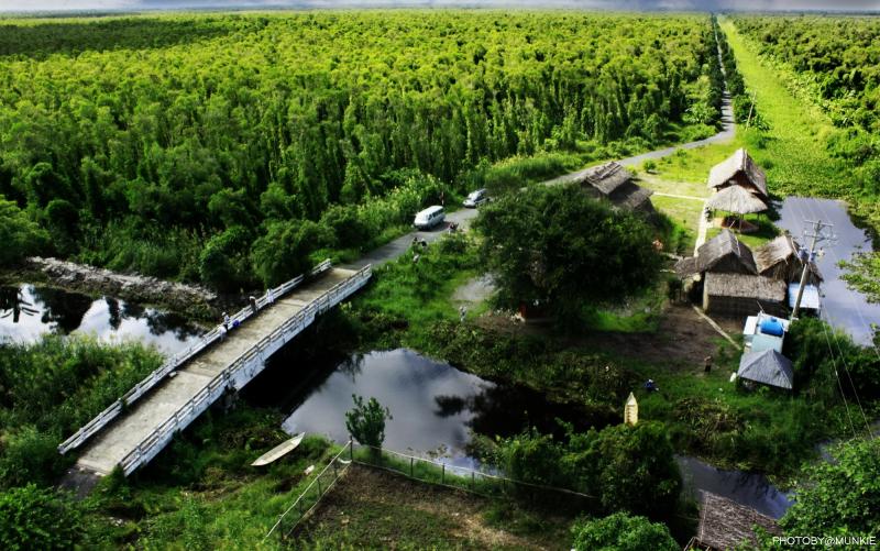 Vườn quốc gia Minh Thượng