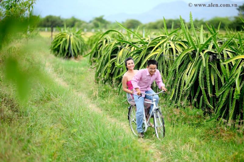 Vườn Thanh Long