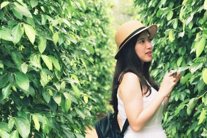 Đến Phú Quốc bạn không thể nào bỏ qua việc chụp hình checkin tại vườn hồ tiêu