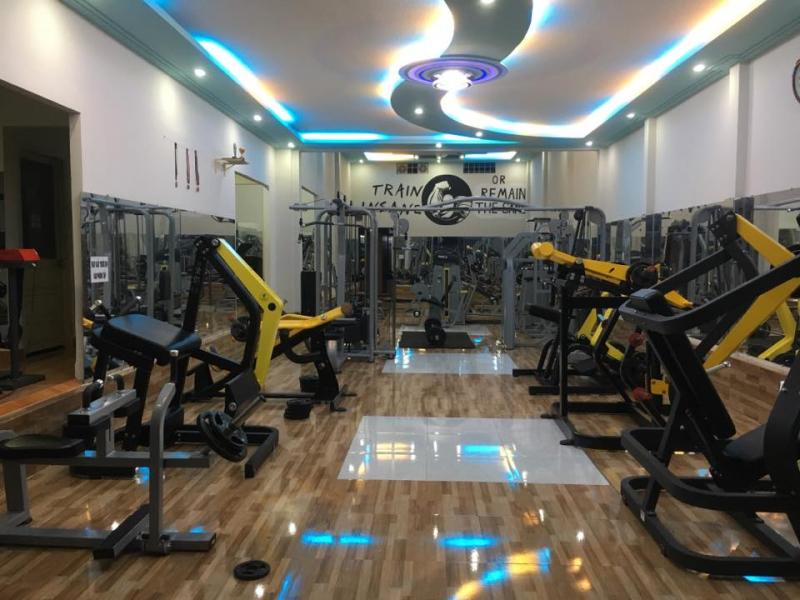 VX's Fitness