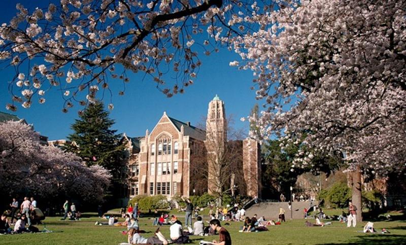 Không khí học tập ở Đại học Washington