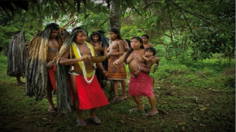 Hình ảnh bộ tộc Wayampi