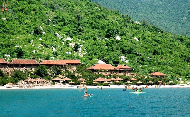 Wild beach Resort