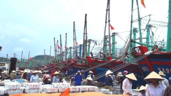 Tàu cá tấp nập về bến ở xã Tiến Thủy - Quỳnh Lưu