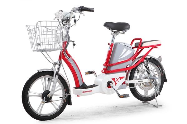 Xe đạp điện Bridgestone