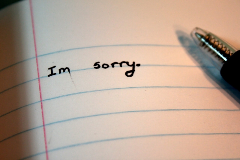 Xin lỗi
