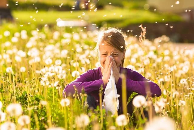 Dị ứng với phấn hoa