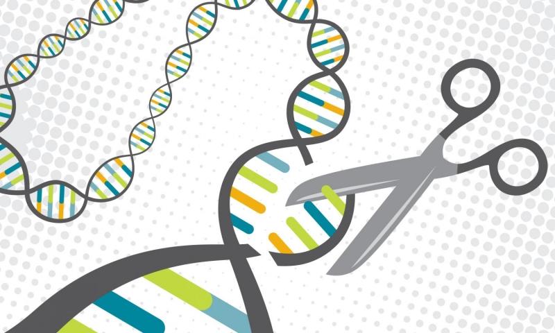 Gene di truyền một trong những nguyên nhân gây ung thư đại tràng
