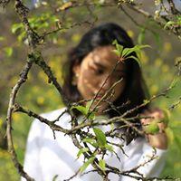 Kim Tien Le